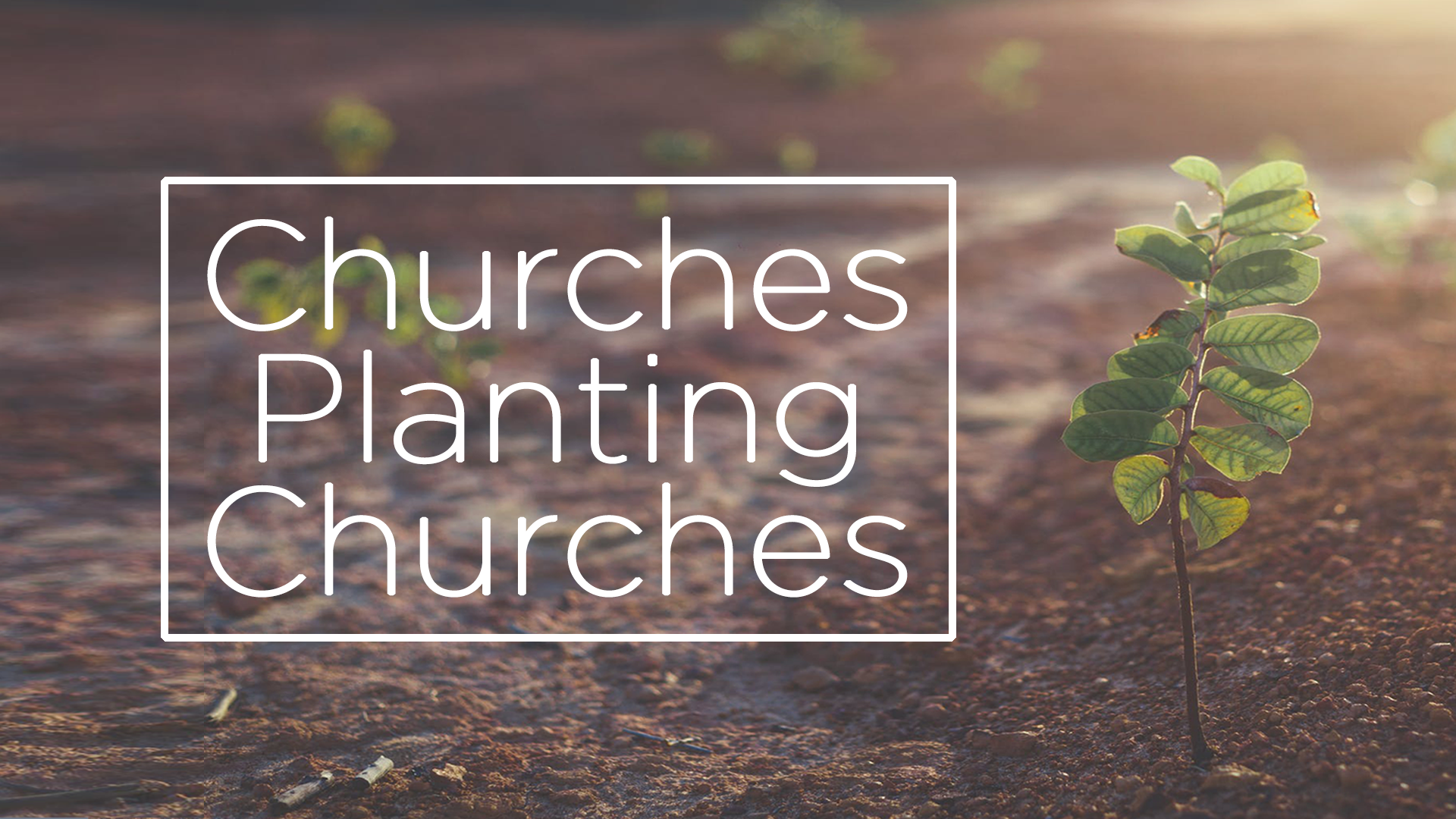 churches planting churches